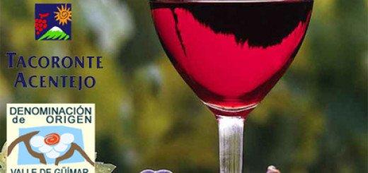Gran Fiesta de Vinos Tenerife