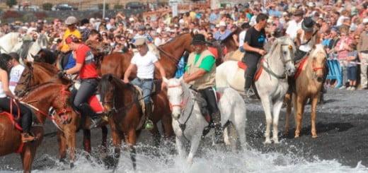 San Sebastian te Adeje 2013, de paardenshow