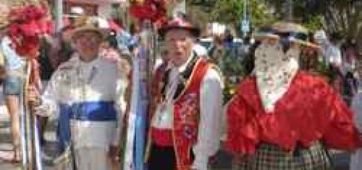 Fiestas Adeje Romería
