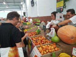 Boerenmarkt Los Cristianos