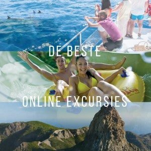 De beste online excursies